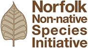Norfolk Non-native Species Initiation